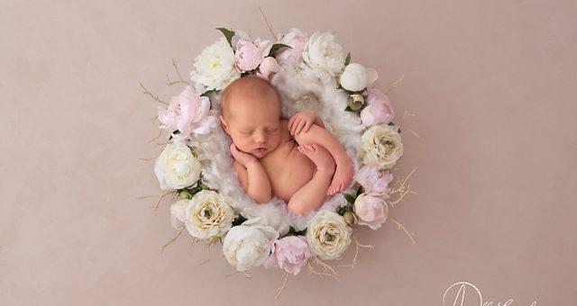 Josie, Pensacola Newborn photographer