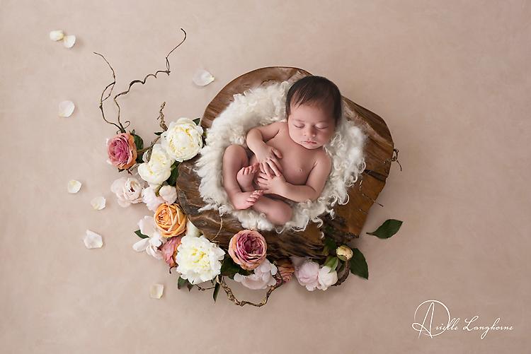 newborn in a bowl