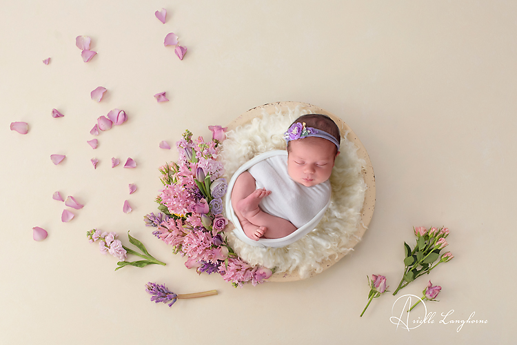 newborn photography and flowers