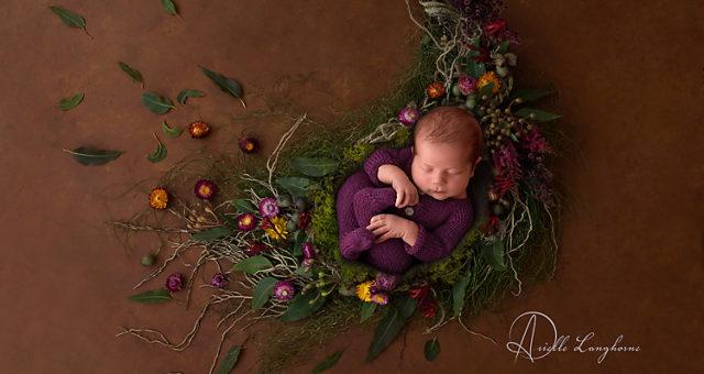 Charlie, Gulf Breeze Newborn Photographer