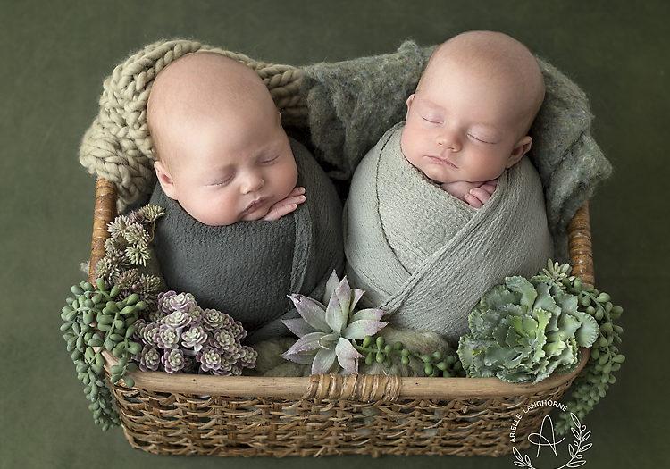 Max & Dax, Pensacola Newborn Photographer