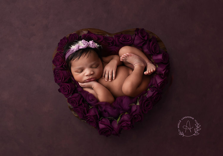 Balenci Isabella, Pensacola newborn photographer
