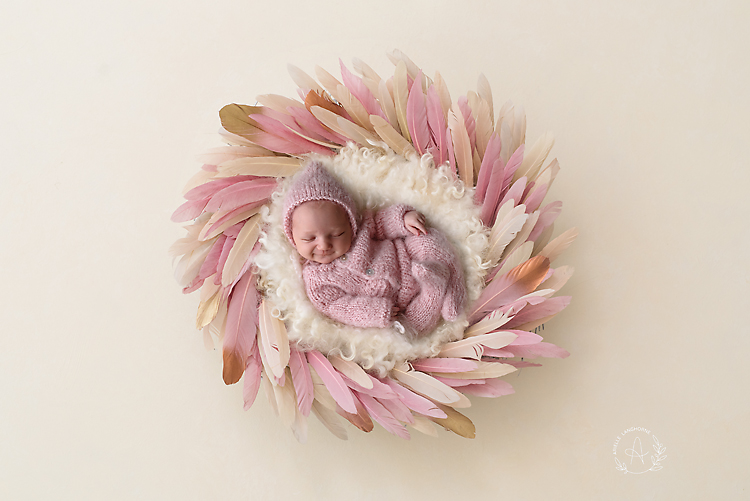 feather nest